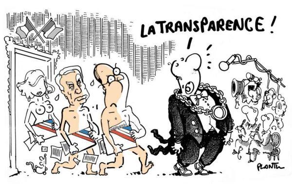 transparence-plantu